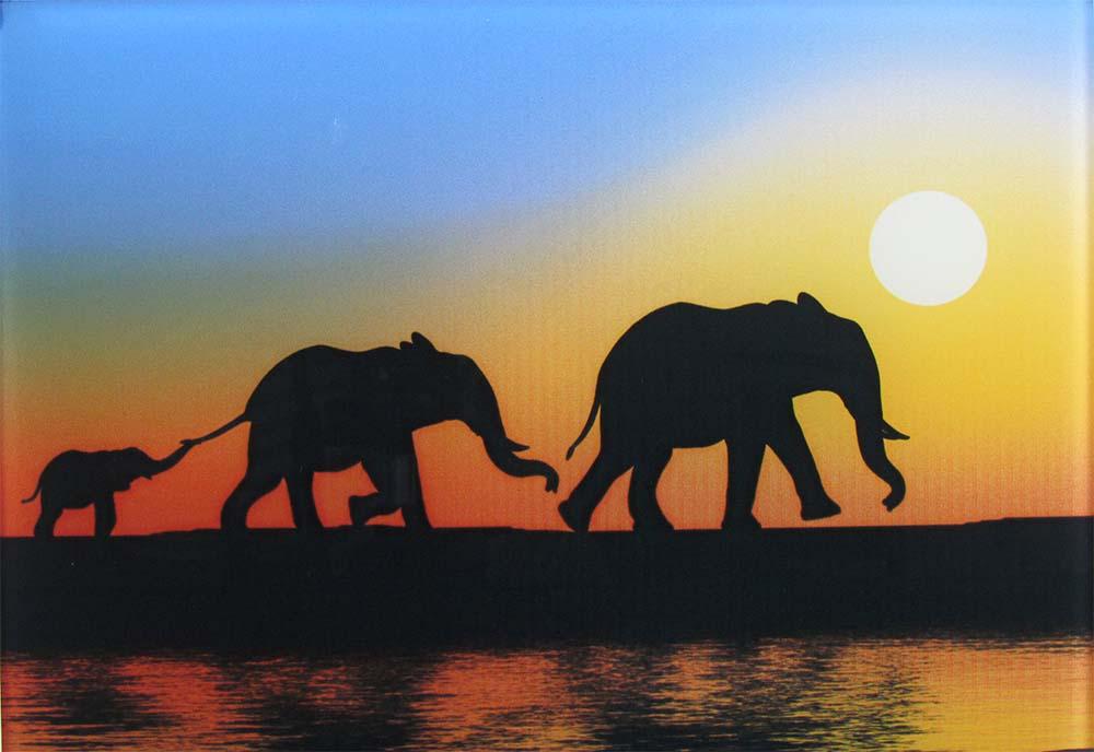 Digitaldruck auf Glas - Darstellung einer Elefantenfamilie